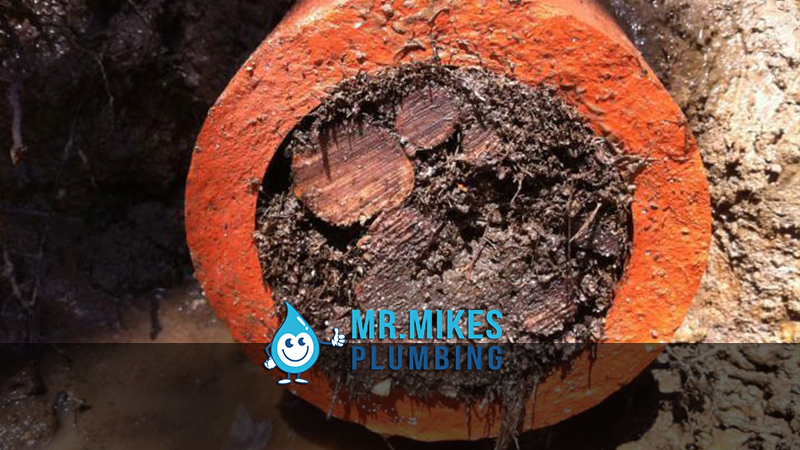 Blocked Drains Calgary | Drain cleaning Calgary Mr  Mike's Plumbing