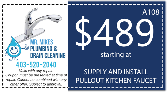 Mr. Mikes Plumbing Kitchen Faucet Discount Coupon